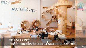ME KATT CAFÉ คาเฟ่น้องแมวที่เหล่าทาสแมวทั้งหลายไม่ควรพลาด! nungchillchill บาร์ลับ ร้านนั่งชิล แฮงเอาท์ ร้านดาดฟ้า