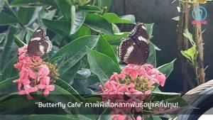 """""""Butterfly Cafe"""" คาเฟ่ผีเสื้อหลากพันธุ์อยู่แค่ที่ปทุม! nungchillchill บาร์ลับ ร้านนั่งชิล แฮงเอาท์ ร้านดาดฟ้า"""